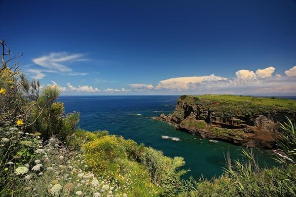 Bucht im Grünen Felsküste