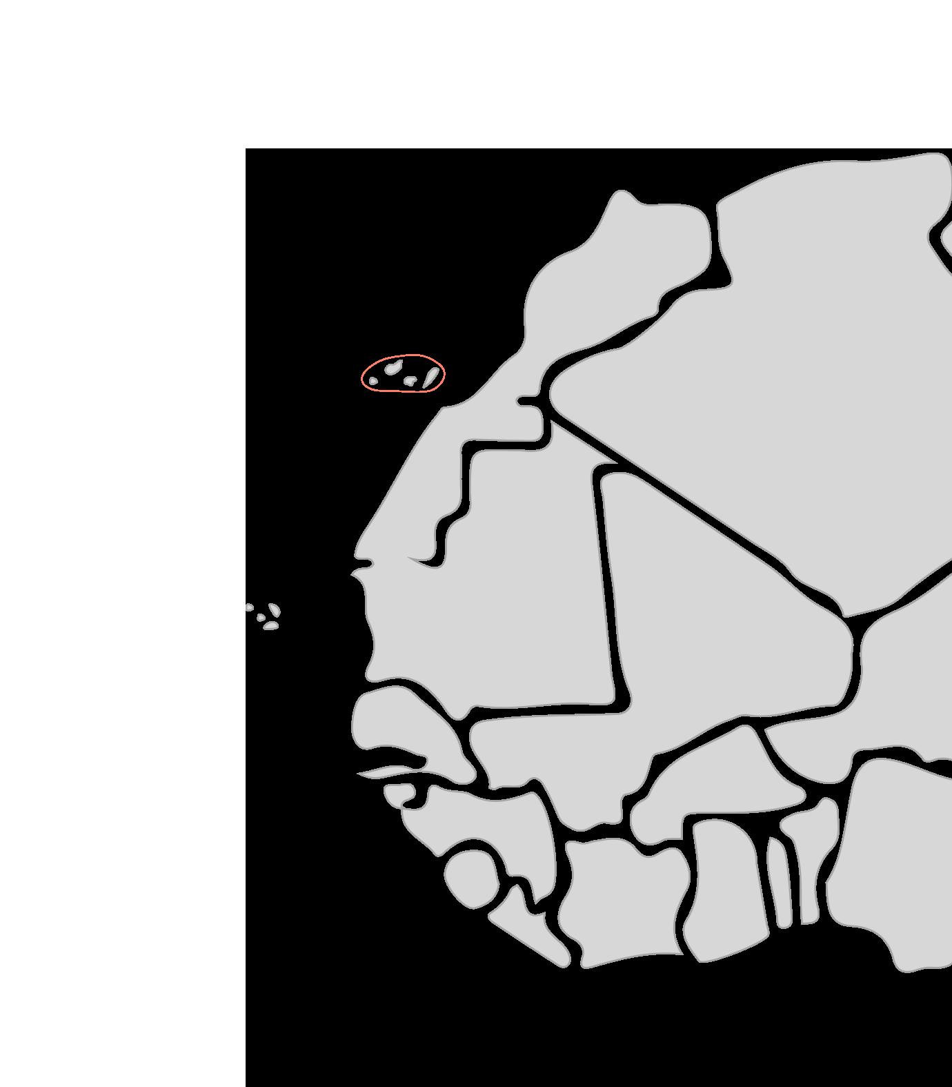 Karte Segelreisen Kanaren